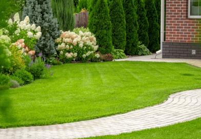 Grass Carpet for Home Decor
