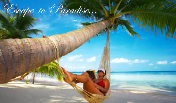 st Martin vacation rentals